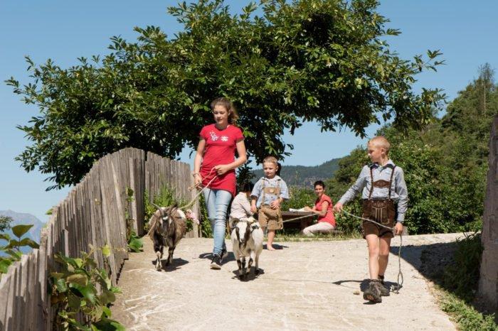 Kinderurlaub auf dem Bauernhof – spannende Erlebnisse in der Bergwelt