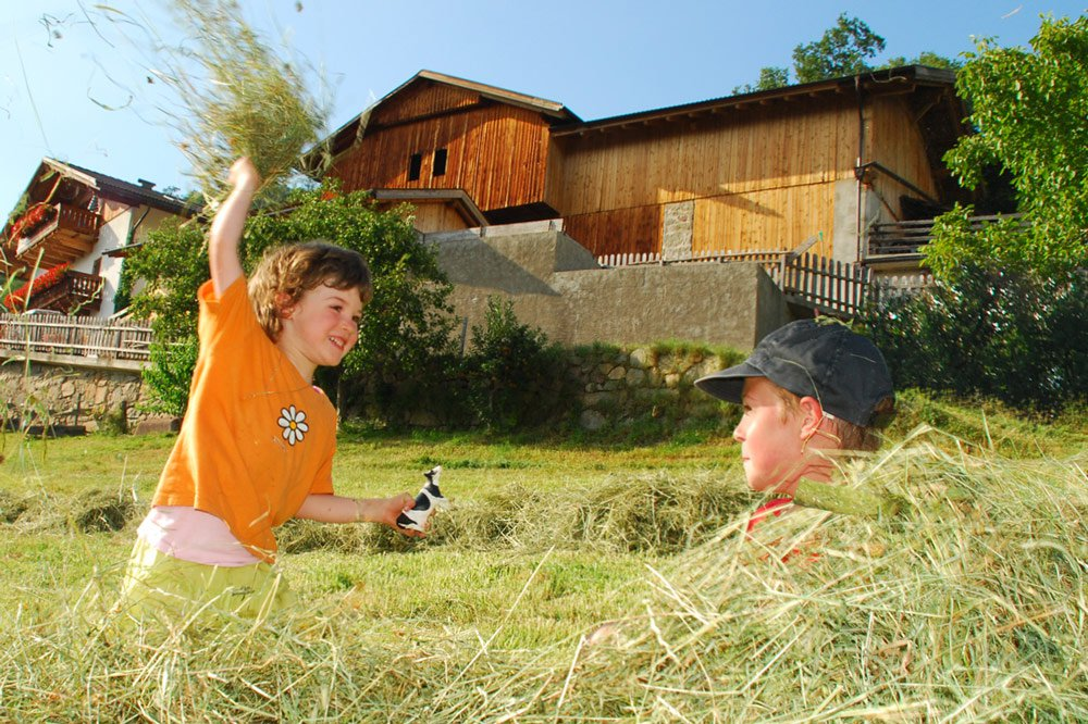 Family holiday at the children farm in South Tyrol