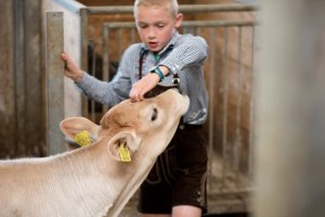 Farm holidays in South Tyrol with children 3